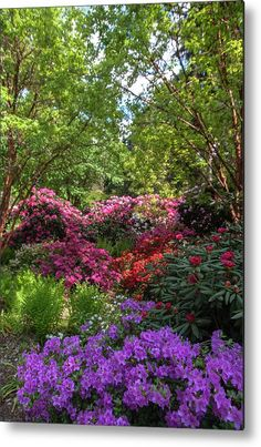 Any Images, Art Techniques, Your Image, Fine Art America, Garden Design, Bloom, Rainbow, Canvas Prints, Metal