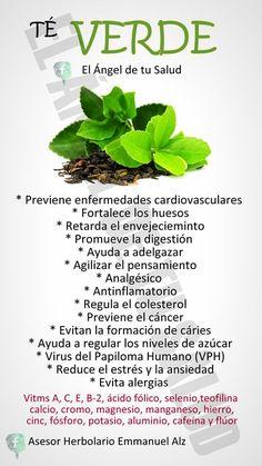 Te verde para bajar de peso dosis de tylenol