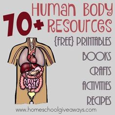 The human body is exciting to study. Science doesn't get any more real-life than studying one's body! Homeschool Giveaways is offering 70+ Human Body Resour