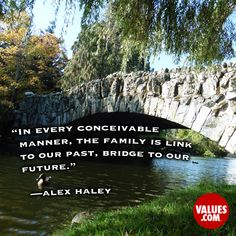 An inspirational quote by Alex Haley from Values.com