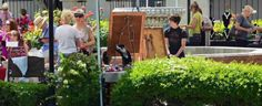Spring Arts in the Plaza Tucson, AZ #Kids #Events