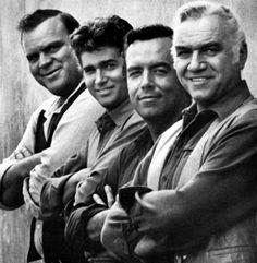 The Cartwright men all in a row (Bonanza)