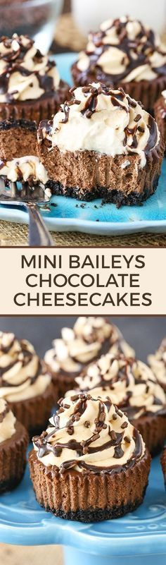 Mini Baileys Chocolate Cheesecakes - irish cream in the cheesecake and the whipped cream! The cupcake size makes them the perfect size dessert for St. (Chocolate Cupcakes For Kids) Mini Desserts, Mini Cheesecake Recipes, Chocolate Desserts, No Bake Desserts, Just Desserts, Delicious Desserts, Baileys Cheesecake, Chocolate Chocolate, Strawberry Cheesecake