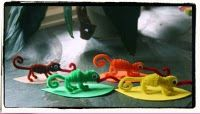 The Mixed-up Chameleon craft (Eric Carle)