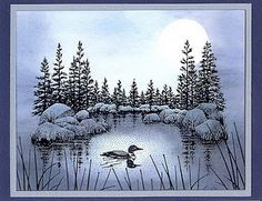Lakeside Cove - Loon in the Moonlight