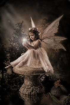 """If you should catch a fairy and place it in a jar, be sure to treat it kindly and do not take it far""♬"