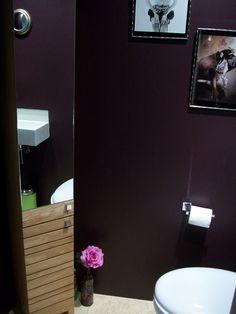 Anthropologie rug vases pot dark pelt farrow ball paint for Aubergine bathroom ideas