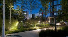 The City Dune / SEB Bank by SLA landscape architecture, photo by Jens Lindhe. Architecture Photo, Landscape Architecture, Landscape Design, Park Lighting, Outdoor Lighting, Elephant Park, Public Realm, Pedestrian Bridge, Public Garden