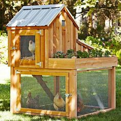 I'd use this as a rabbit hutch