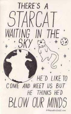 """David Bowie - """"Starman"""" 17 Classic Song Lyrics Significantly Improved By Cats Crazy Cat Lady, Crazy Cats, David Bowie Starman, David Bowie Lyrics, Be My Hero, Classic Songs, Lettering, Cats And Kittens, Cute Kittens"""