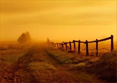 krys_art: Świtanie in the fog - Pixdaus