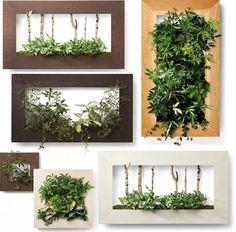 12 Indoor Plant Pots, Indoor Garden, Plant Wall, Plant Decor, Wall Terrarium, Moss Wall Art, Garden Frame, Vertical Garden Wall, Succulent Gardening