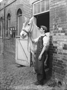 St Pancras station's King's Road stables, London, 1936. In the 1930s the London, Midland and Scottish Railway still used horses for a variety of tasks, including shunting in goods yards and sidings and delivering goods.