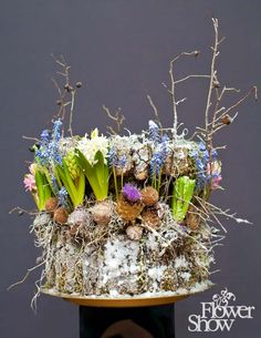 Ukraine Flower Show