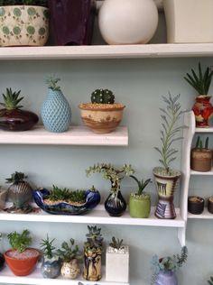 I need more shelves !