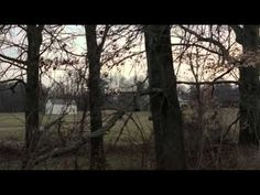 El Bosque (Pelicula Completa)