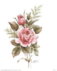 rose pencil drawings