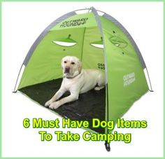 Dogs Gone Camping: 6 Must Have Dog Items To Take Camping