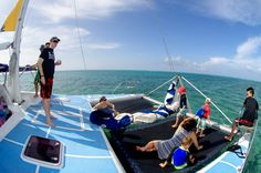 Daily trips to Stingray City Cayman Islands, Snorkeling, Gym Equipment, Sailing, Have Fun, Trips, Paradise, Wrestling, City