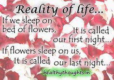 Reality Of Life...