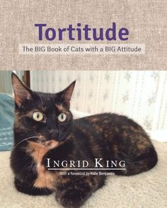 Pre-Order Now! $1 for each copy pre-ordered will be donated to the Jackson Galaxy Foundation to benefit at risk cats.