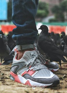 Staple x Puma Blaze of Glory Pigeon (by janzabdj)