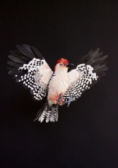 paper bird sculptures9