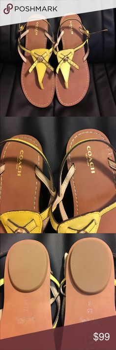 Coach Sandals. NWT. 8.5 Brand new. Size 8.5 Coach Shoes Sandals