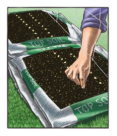 Simply set out purchased bags of topsoil, cut them open, and plant seeds and seedlings right into the topsoil. The bag garden in this plan will be brimming with more than 20 vegetables and culinary herbs by its third year!
