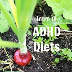 ADHD Diets: Intro to Treating ADHD Symptoms with Diet - ADHD Parenting Blog