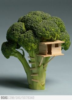 small world Sustainable Living 'Broccoli House' sustainability art architecture tree house miniture sculpture vegetable Top Photos, Food Sculpture, Creative Food Art, Creative People, Creative Artwork, Creative Things, Creative Ideas, Tiny World, Oeuvre D'art
