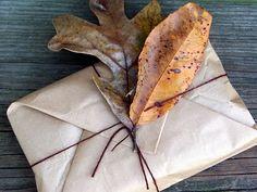 autumn packaging