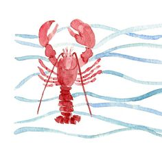Beautiful water color paintings in this shop ~  http://www.etsy.com/listing/93609870/red-lobster-original-painting-of-lobster