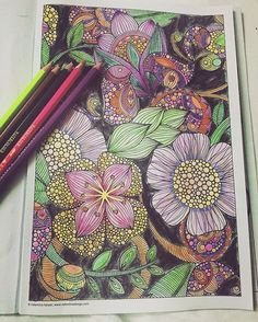 Crazy coloring .... #valentinaharper #instacoloring #kuelox #colleencoloredpencils #colorpencils #watercolorpencils #watercolorpainting #coloring #colouring #colorful #ilovecoloring #colorpencils #coloringbook #adultcoloring #adultcoloringbook #coloringflowers #coloringaddict #colortherapy