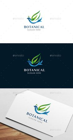 Botanical Bird Logo Template Transparent PNG, Vector EPS, AI Illustrator. Download here: https://graphicriver.net/item/botanical-bird-logo-template/17342515?ref=ksioks