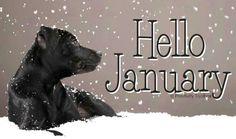 Hello January! via www.Facebook.com/PositivityToolbox