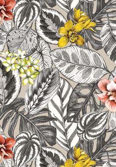Calathea, Pattern Design, Print Design, Decorative Leaves, Tropical Pattern, Black And White Design, Tropical Leaves, Fabric Wallpaper, Print Patterns