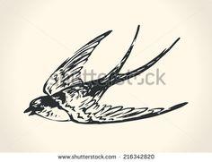 dibujos de pjaros a lapiz volando  Buscar con Google  dibujos