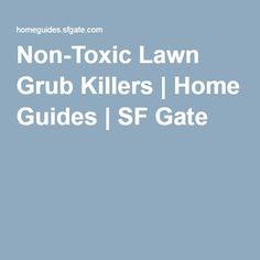 Non-Toxic Lawn Grub Killers | Home Guides | SF Gate