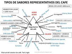 Típicos Sabores Representativos del #Café #infografía