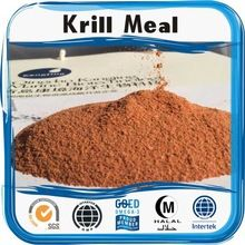 OEM Manufacturer Supply Natural Saw Palmetto krill meal Health And Wellness, Health Care, Krill Oil, Oem, Powder, Pure Products, Meals, Natural, Health Fitness