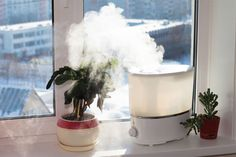 Tips For Cleaning & Disinfecting Your Home Humidifier