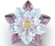 Waterlily, Rosaline - Figurines - Swarovski Online Shop