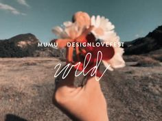 mumu x designlovefest WILD Spray Paint Wood, Silver Spray Paint, Clay Art Projects, Projects To Try, Diy Backdrop Stand, The Gift Of Imperfection, Dress Your Tech, Canopy Frame, Washi Tape Diy