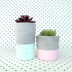 Concrete bowls, tealight holders & succulent planters available in our Urban Decor range from www.nothingbutvintage.com.au