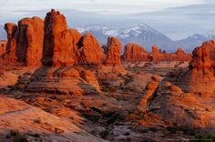 Image detail for -Sunset, Windows section and La Sal mountains, Arches National Park, Moab, Utah, USA.