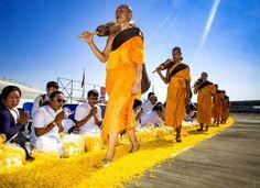 Pics of the week - Zuma Wire/REX/Shutterstock/Rex Images
