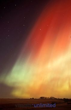Aurora Borealis, Alberta, Canada. Would be lovely as a watercolor tattoo