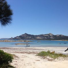 Killiecrankie Bay, Flinders Island. #tasmania #flindersisland #beach Image Credit: Quilitis_Di