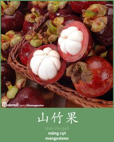 山竹果 - Shānzhú guǒ - măng cụt - mangosteen